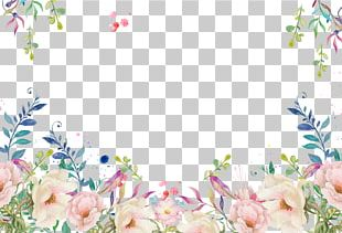 Floral Decorative Frame PNG