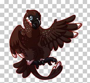 Bird Of Prey Beak Chicken As Food PNG