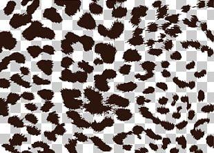 Leopard Cheetah Animal Print Jaguar PNG