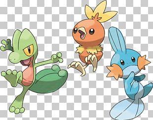Pokémon Ruby And Sapphire Pokémon Omega Ruby And Alpha Sapphire Pikachu Mudkip PNG