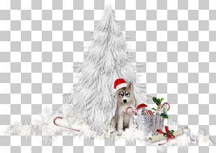 Christmas Tree Christmas Day Portable Network Graphics Adobe Photoshop PNG