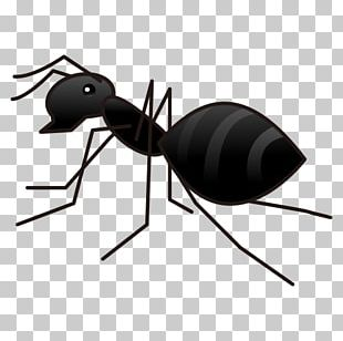 Ant Emoji Sticker Text Messaging Gaggan PNG