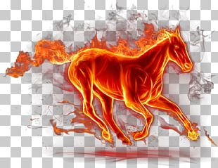 Horse Fire Pony PNG