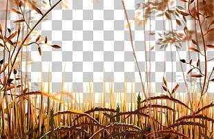 Cartoon Autumn Landscape Dry Yellow Grass PNG