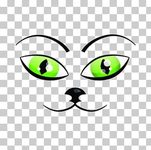 Cat Drawing Kitten Illustration PNG