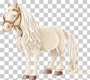 American Miniature Horse Pony Equestrian PNG