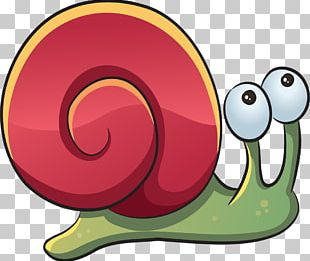 Drawing Sea Snail Sea Snail PNG