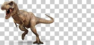 Tyrannosaurus Velociraptor Jurassic Park: The Game Triceratops PNG