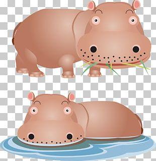 Hippopotamus Lion Giraffe Euclidean PNG