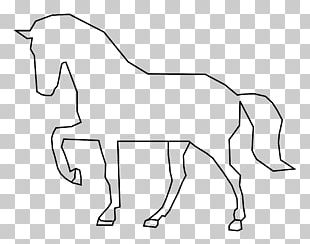 Stallion Tennessee Walking Horse Pony PNG