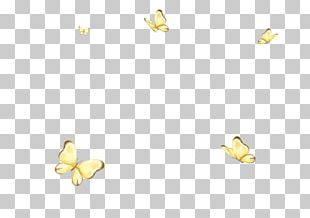 Water Bird Duck Goose Cygnini Pattern PNG