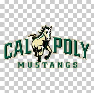 California Polytechnic State University Cal Poly San Luis Obispo College Of Engineering California State University PNG