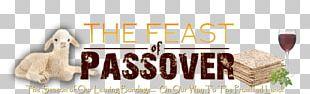 Passover Sacrifice Festival 0 PNG