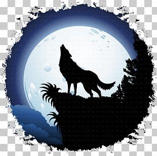Gray Wolf Moon Coyote Red Wolf PNG