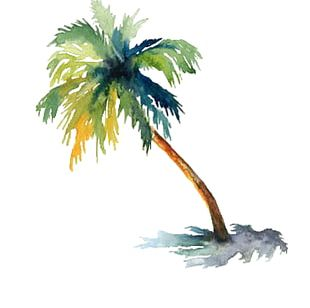 Watercolor Painting Arecaceae Drawing Tree PNG