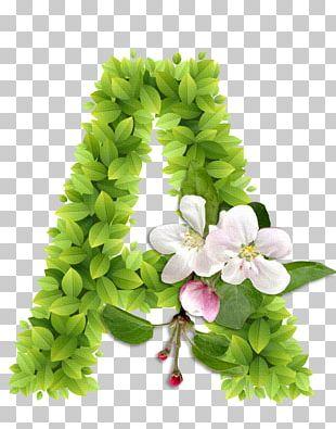Letter Alphabet Flower Ch PNG