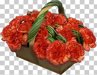 Red Meat Cut Flowers Web Hosting Service PNG