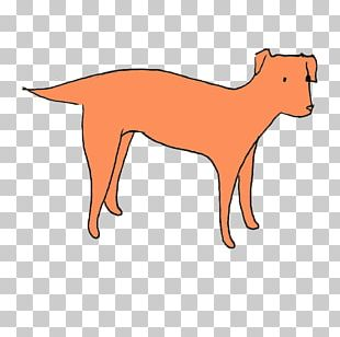Dog Red Fox Snout Animal PNG