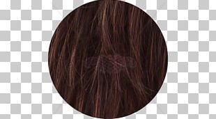 Hair Coloring Brown Caramel Color Long Hair PNG