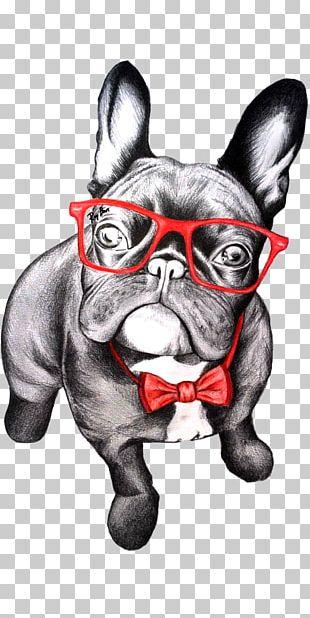 French Bulldog T-shirt Pug Puppy PNG