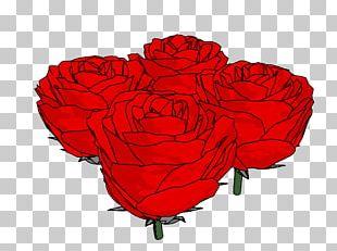 Garden Roses Floristry Cut Flowers Petal PNG