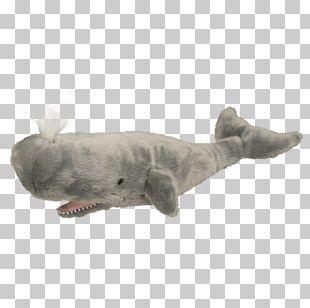 Sperm Whale Stuffed Animals & Cuddly Toys Cetacea Plush PNG
