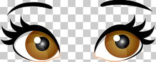 Human Eye Brown PNG