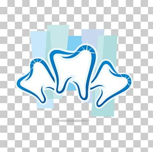Dentistry Orthodontics Human Tooth PNG
