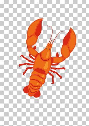 Seafood Lobster Cartoon PNG