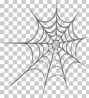 Spider Web Web Design PNG