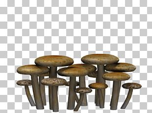 Mushrooms Flat Heads PNG