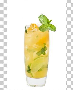 Mojito Cocktail Garnish Aguas Frescas Mai Tai Mint Julep PNG