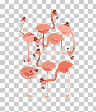 Flamingo Pink Illustration PNG