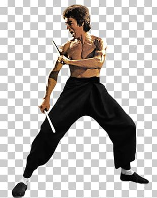 Martial Arts Film Chinese Martial Arts Jeet Kune Do PNG