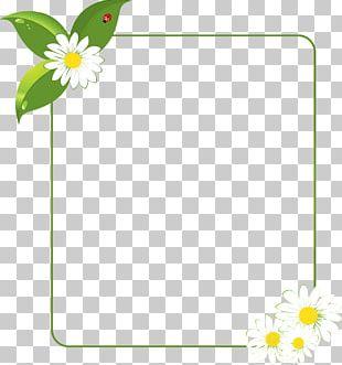 Leaf Floral Design Petal Plant Stem PNG