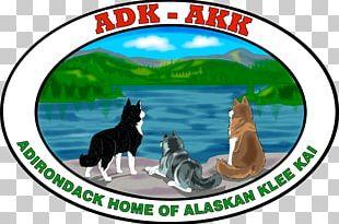 Dog Logo Wildlife PNG