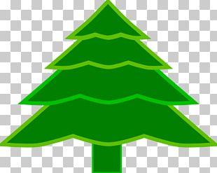 Christmas Tree Spruce Fir Christmas Ornament PNG