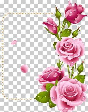 Garden Roses Frames Flower Paper PNG