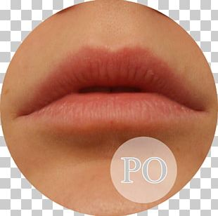 Lip Gloss Lipstick Eyelash Peach PNG