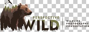 Wildlife Photography Logo Photographer PNG