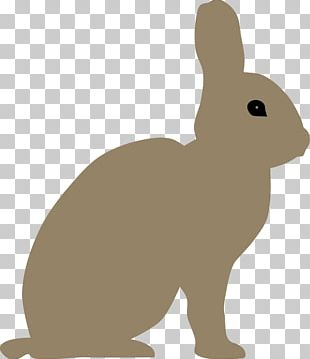 Easter Bunny Snowshoe Hare Rabbit PNG