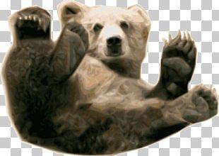 Brown Bear Polar Bear Giant Panda Grizzly Bear PNG