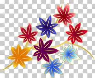 Drawing Illustration Computer Icons Floral Design Autumn Leaf Color PNG