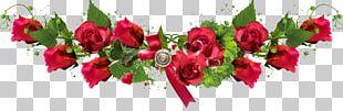 Garden Roses Cut Flowers День защиты детей Floral Design PNG