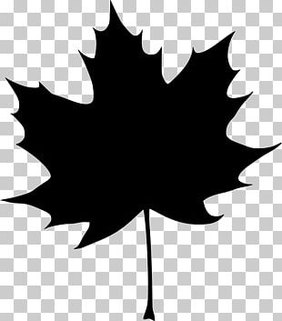 Autumn Leaf Color Maple Leaf Computer Icons PNG