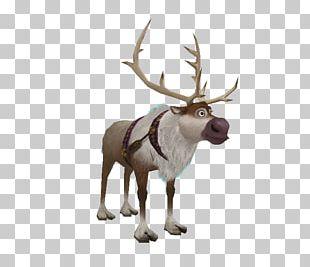 Kristoff Elsa Reindeer Olaf PNG