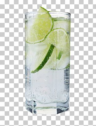 Vodka Tonic Cocktail Gin And Tonic Screwdriver PNG