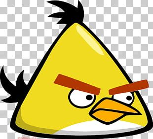 Angry Birds Space Domestic Canary Computer Icons PNG