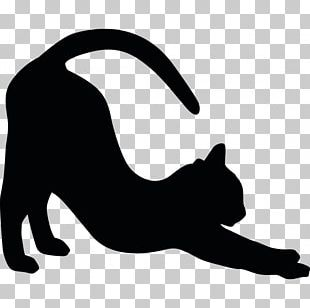 American Shorthair British Shorthair Black Cat Sticker Decal PNG