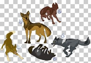 Dog Breed Horse Cat Fauna PNG